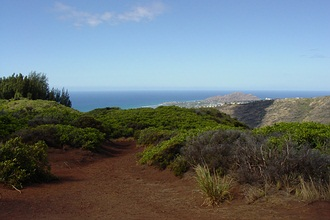 Hawaii Loa Ridge Trail in Honolulu,<br /> Hawaii.